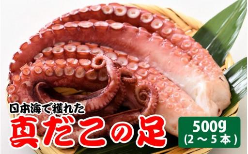 【コロナ訳あり】日本海で獲れた、真だこの足