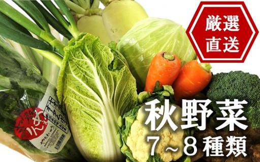 【先行予約】産地直送!秋野菜セット