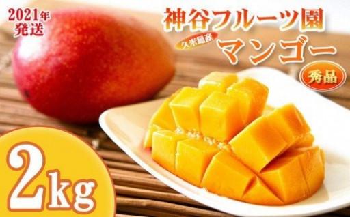 神谷フルーツ園 完熟マンゴー2kg ◆秀品◆