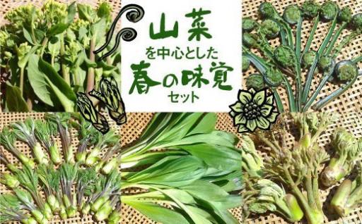 《期間・数量限定》山菜を中心とした春の味覚セット
