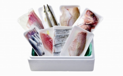 【輪島の魚屋直送】季節の鮮魚おまかせセット