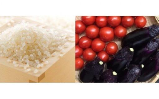 お米と野菜の安心で美味しいセットです!