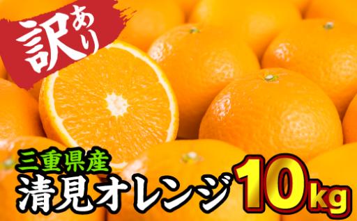 【訳あり】 清見オレンジ(きよみ) 10kg