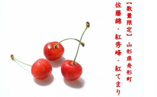 【人気】さくらんぼ先行予約 3品種5パターン