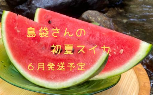 島袋さんの初夏スイカ《5〜7Kg×1⽟》