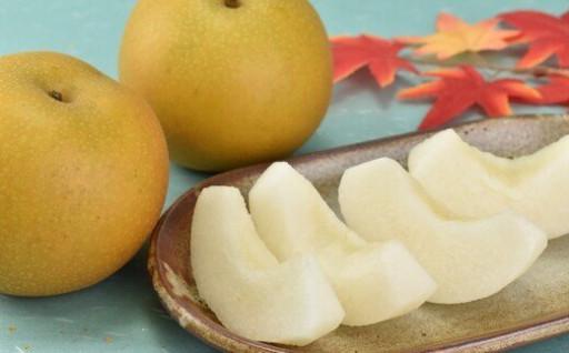 先行申込開始!梨の概念が変わる「市川のなし」