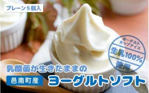 生きてる乳酸菌のヨーグルトで作ったカップアイス
