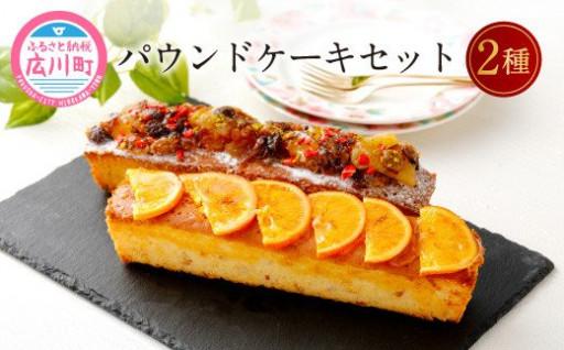 パウンドケーキ 2種 セット