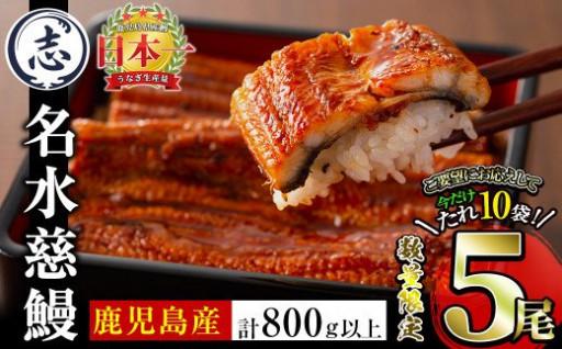 国産うなぎ蒲焼名水慈鰻5尾(合計800g以上)