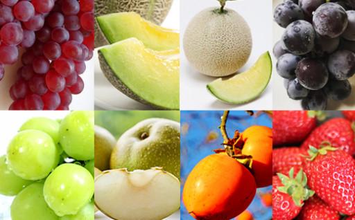 【毎年大人気】旬の時期にフルーツ8種お届け!