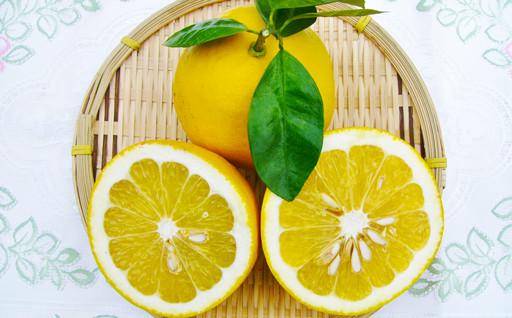 夏の柑橘☆河内晩柑のご予約を受け付けています!