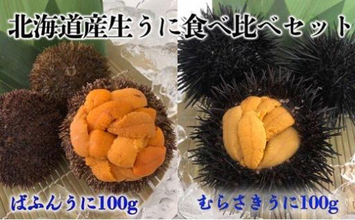北海道産生うにを食べ比べ!