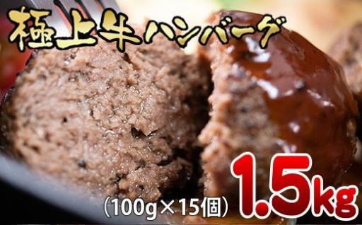 極上ハンバーグ 15個 100% 1.5kg