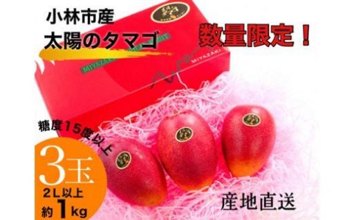 初セリで1箱20万円‼宮崎ブランド太陽のタマゴ♪