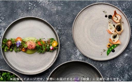 晶雲母銀 24cm渕付丸皿/肉皿 セット