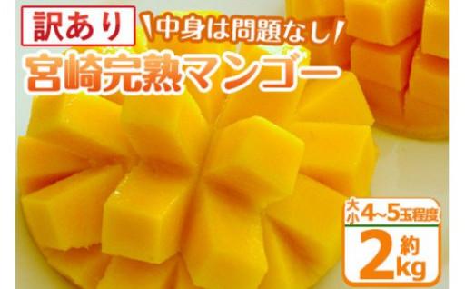 訳あり!宮崎完熟マンゴー(約2kg・B級品)