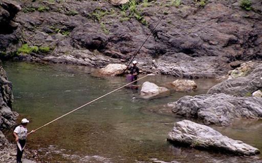【椎葉での渓流釣りを楽しむ】遊漁許可証(年券)