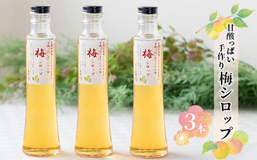 ふかざわ農園の梅シロップ【250g×3瓶】