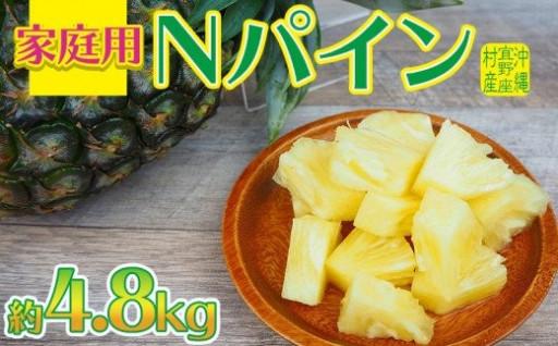沖縄 宜野座村産 家庭用Nパイン 約4.8kg