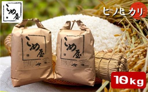 玉名産 「ヒノヒカリ」(10kg)