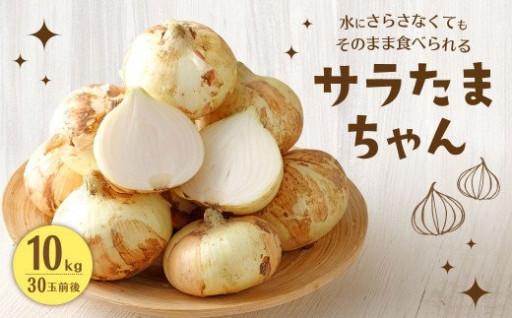 サラたまちゃん 10kg (30玉前後)