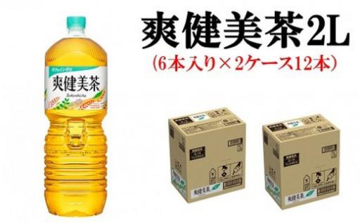 爽健美茶2Lペットボトル(6本入り×2ケース)