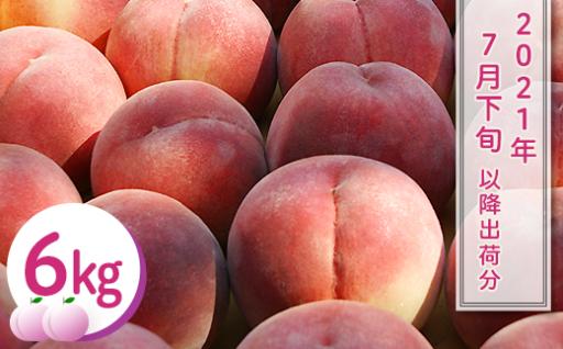 【桃6㎏】長野市川中島の桃農家を応援プロジェクト