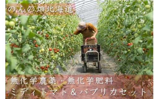 のんの畑北海道ミディトマトとパプリカ