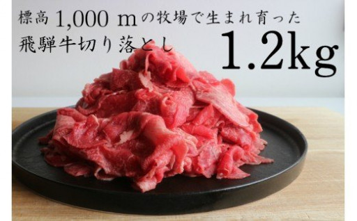 牛肉 飛騨牛 切り落とし 切落し 1.2kg