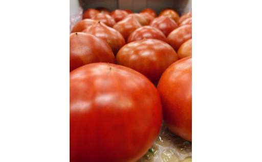 糖度8度以上!希少な超甘完熟フルーツトマト