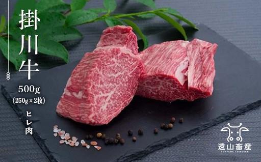 掛川牛「和牛」ヒレ肉500g(250g×2枚)