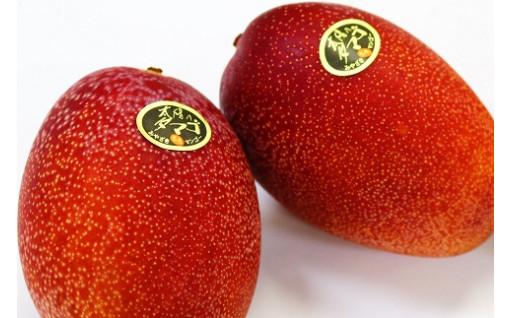 宮崎県産完熟マンゴー「太陽のタマゴ」2玉セット!