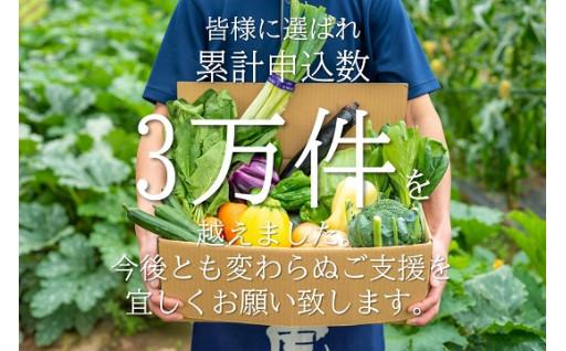 12ヶ月連続で届く、安定の野菜セット!!
