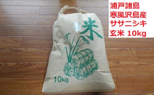 珍しい島育ちのお米「寒風沢米」を10kgお届け!