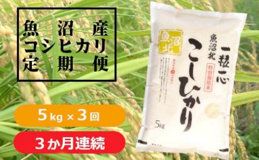 魚沼産コシヒカリ特別栽培米 定期便
