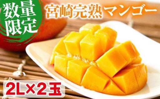 宮崎完熟マンゴー(2L×2玉)