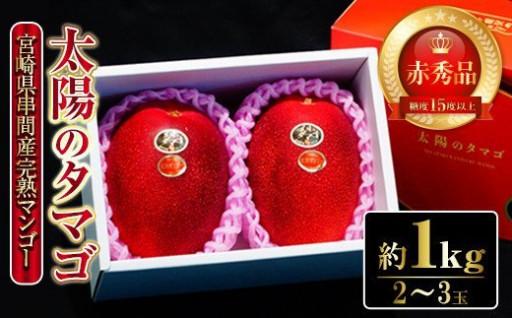 太陽のタマゴ・赤秀(1kg・2~3玉)
