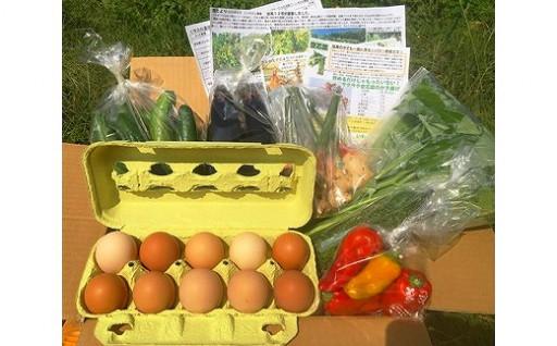 循環農法で育まれた平飼い玉子と野菜セット