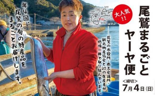 尾鷲まるごとヤーヤ便(定期便)【締切7月4日】