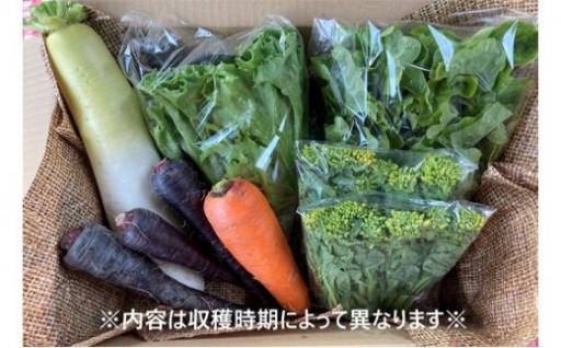 七彩ファームの季節の野菜・果物詰合わせを追加!