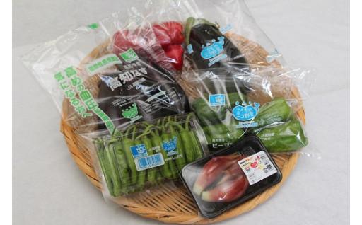 74-8 彩り豊かな安芸市野菜セット