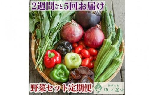【5回定期便】<坂ノ途中>夏野菜 セット