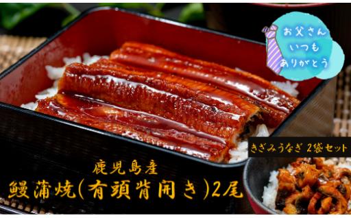 【父の日ギフト】 鰻蒲焼2尾・きざみうなぎ
