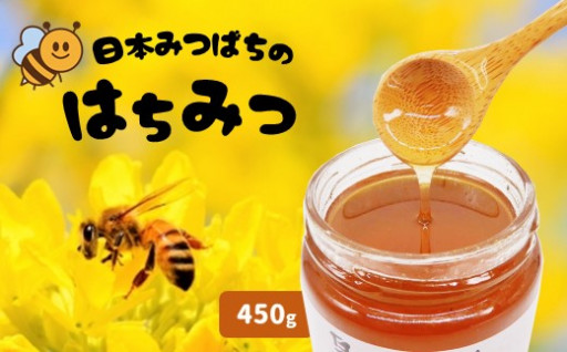 和水町産 日本蜜蜂のはちみつ「希少品」 320g