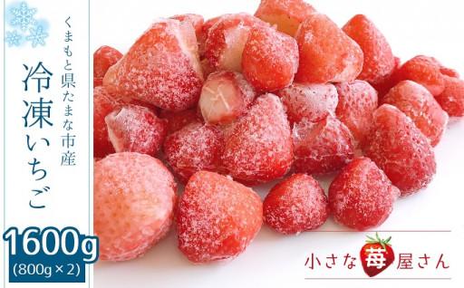 冷凍いちご玉名市産 800g×2 小さな苺屋さん