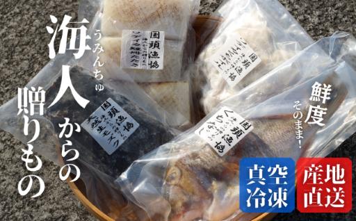 【数量限定】沖縄鮮魚を直送! 海人からの贈りもの