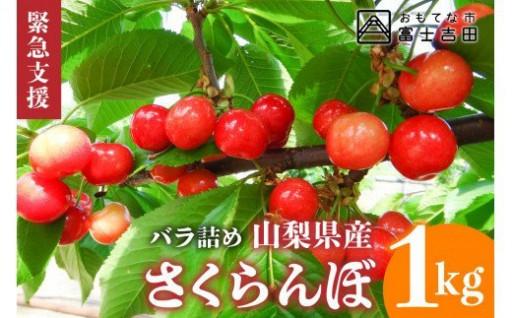 山梨県産紅秀峰 さくらんぼ (1kg) バラ詰め