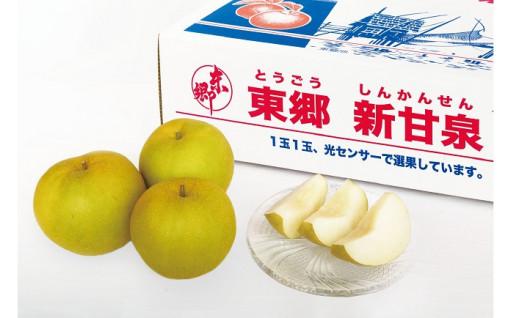 甘みの強い鳥取県オリジナル品種『新甘泉』