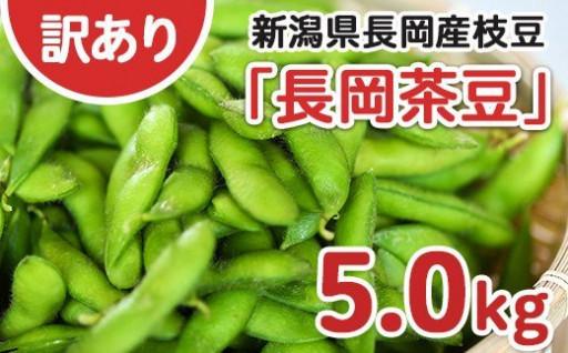 【訳あり】【B品】新潟長岡産枝豆たっぷり 5kg