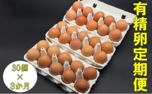 無農薬野菜で育てた平飼い鶏の有精卵定期便